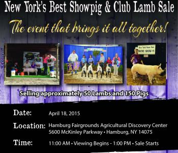 Image NY's Best Showpig and Club Lamb Sale