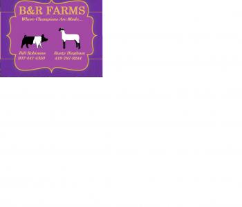 Image B&R Farms