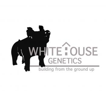 Image White House Genetics